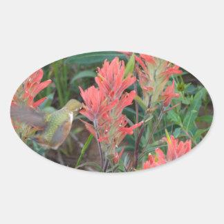 El rubí en rojo florece el colibrí pegatina ovalada