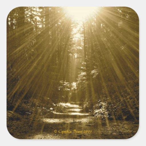 El sabio su bosque pegatina cuadrada