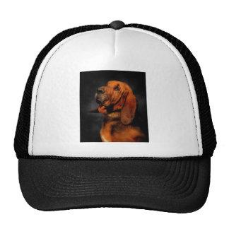 El sabueso gorras de camionero