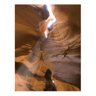 El sacacorchos en el barranco superior del antílop tarjeta postal