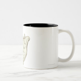 El sacro taza de dos tonos