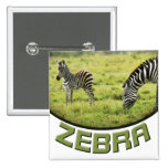 El safari de la fauna de la cebra y del potro de l pins
