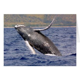 El salpicar de la ballena jorobada tarjetón