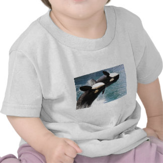El saltar de dos orcas del agua camiseta