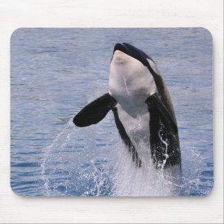 El saltar de la orca del agua alfombrilla de raton