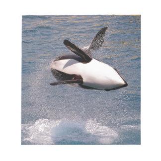 El saltar de la orca del agua libretas para notas