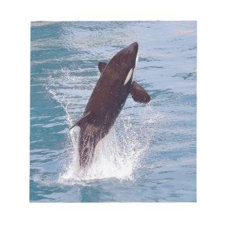 El saltar de la orca del agua blocs de notas