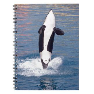 El saltar de la orca del agua libros de apuntes