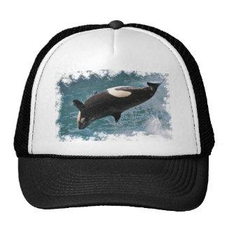 El saltar de la orca del agua gorras de camionero