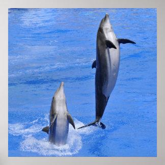 El saltar de los delfínes del agua poster