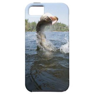 El saltar del lucio europeo del agua en un lago iPhone 5 Case-Mate protector