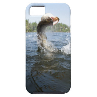 El saltar del lucio europeo del agua en un lago funda para iPhone SE/5/5s