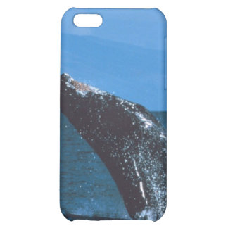 El salto de la ballena jorobada
