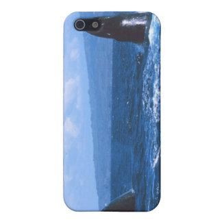 El salto de las ballenas jorobadas iPhone 5 fundas