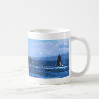 El salto de las ballenas jorobadas taza básica blanca