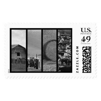 El saludo del collage de la granja de ganado/le envio