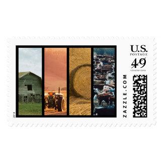 El saludo del collage de la granja de ganado/le franqueo