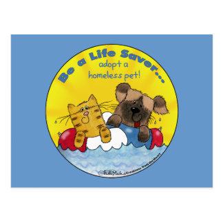El salvador adopta a mascotas sin hogar postal