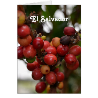 El Salvador Coffee Beans Stationery Note Card