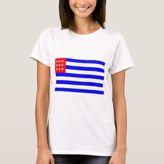 El Salvador Flag (1865) T-Shirt