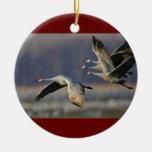 el sandhill cranes en vuelo ornamentos de reyes magos