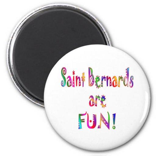 El santo Bernards es diversión Iman