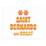 El santo Bernards es grande Postal