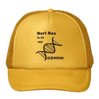 El saxofón de Bari está en mis genes Gorros Bordados