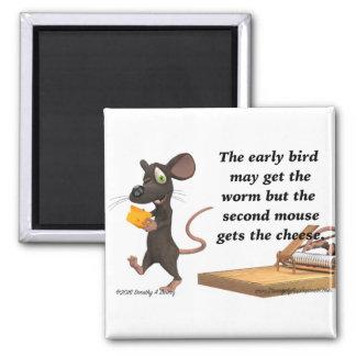 El segundo ratón consigue el queso imán cuadrado
