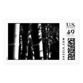 El sello cree las reflexiones de bambú