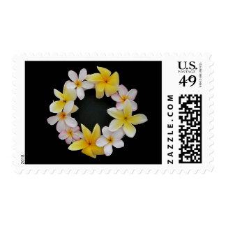 El sello del anillo de la flor del Plumeria puede