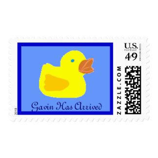 el sello ducky de goma, Gavin ha llegado