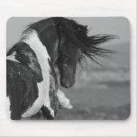 El semental negro y blanco pega el caballo salvaje tapetes de ratones