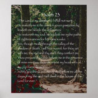 El señor es mi pastor, salmo 23 póster