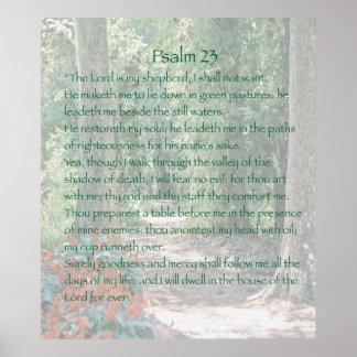 El señor es mi pastor, salmo 23, versión B Póster
