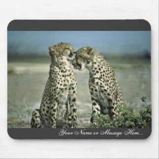 El sentarse de dos guepardos cara a cara tapetes de raton