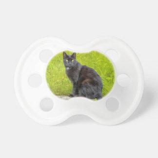 El sentarse del gato negro al aire libre chupetes