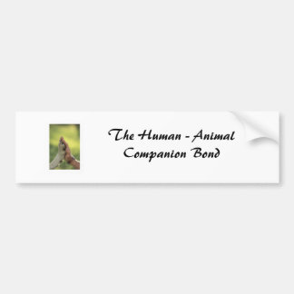 El ser humano - enlace animal del compañero pegatina de parachoque