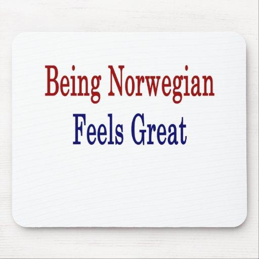 El ser noruego siente grande tapetes de ratón
