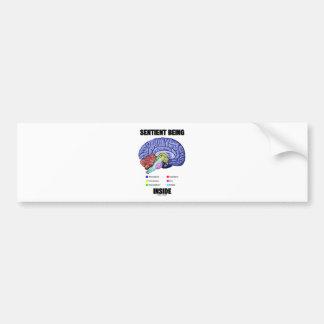 El ser sensible interior (cerebro anatómico) etiqueta de parachoque
