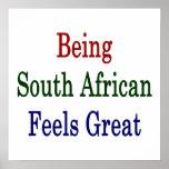 El ser surafricano siente grande posters