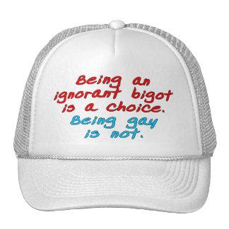 El ser un fanático ignorante es una opción, siendo gorras