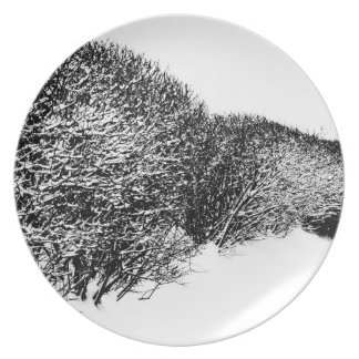 el seto del invierno plato de comida