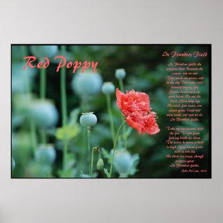 El significado de la amapola roja póster