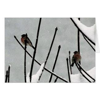El silencio del invierno tarjetas
