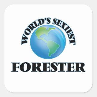 El silvicultor más atractivo del mundo pegatina cuadrada