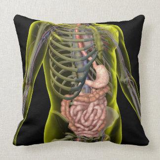 El sistema digestivo cojín decorativo