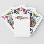 El sistema musculoesquelético 11 baraja de cartas