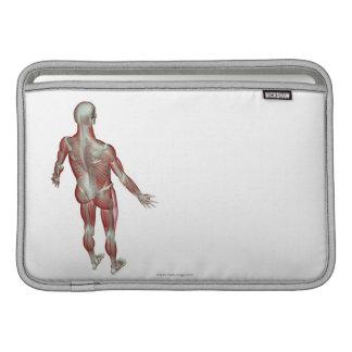 El sistema musculoesquelético 12 fundas MacBook
