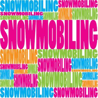 El Snowmobiling colorido Esculturas Fotograficas